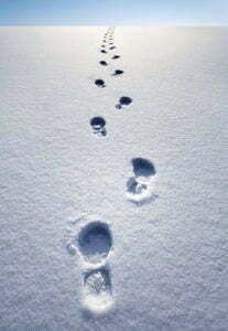 winterstapfen
